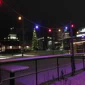 Köp din julgran av Sicklaloppet och Järla Orientering